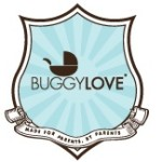 BuggyLOVE Organic Stroller Cleaning Kit {Review}