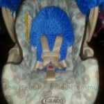 Carseat Canopy The Whole Caboodle Review