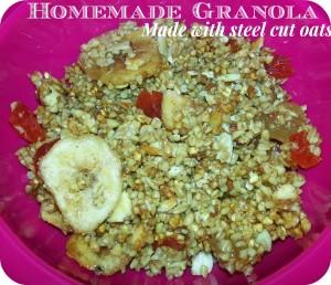 Homemade Granola {Steel Cut Oats} Recipe