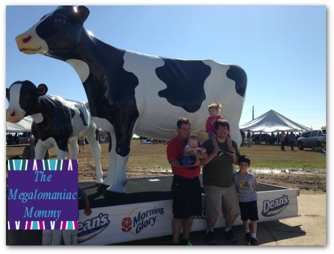 Hanging with the Cows