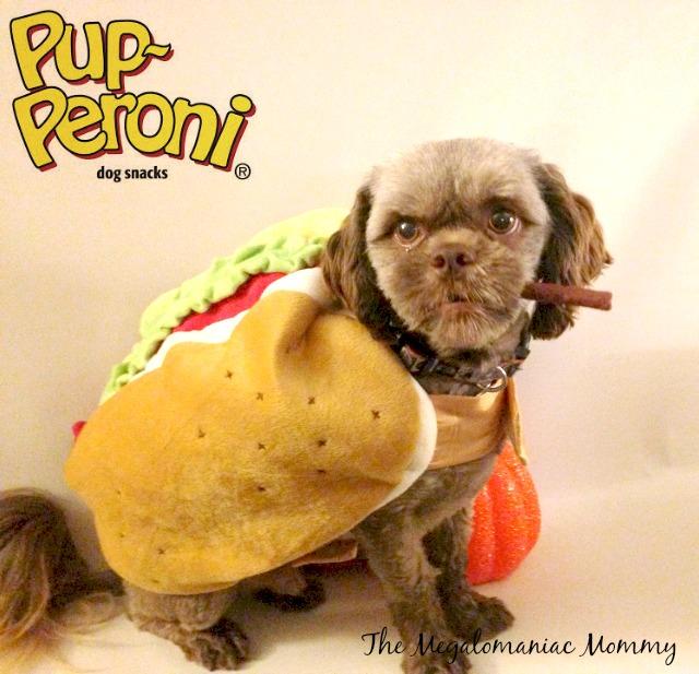 Big Heart Brands Pup-Peroni, Milk Bone Flavor Snacks, Milo's Kitchen Chicken Jerky Sticks, #TreatThePups Bubba