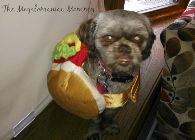 Bubba the Hotdog #PurinaHalloween #sponsored #spon #ad