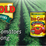 Crock-Pot Cooking with Red Gold Tomatoes & the 2 a Day Crock-Pot Giveaway