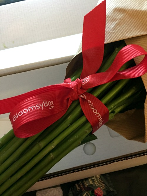 BloomsyBox Ribbon