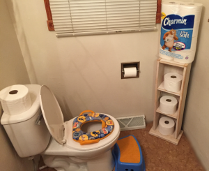 8 Tips for Potty Training  #CharminAtSamsClub