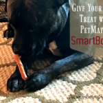 Give Your Pet a Treat with PetMatrix SmartBones + Giveaway Ends 8/23