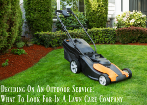 Deciding On An Outdoor Service: What To Look For In A Lawn Care Company